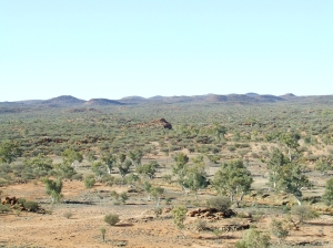 photo of central Australian landscape, red hills in background flat plains with ghost gums foreground