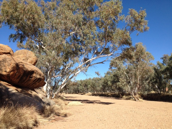 Photo of the Todd river bed at Alice Springs